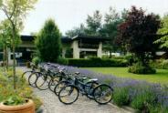 Location de bicyclettes sur le Camping